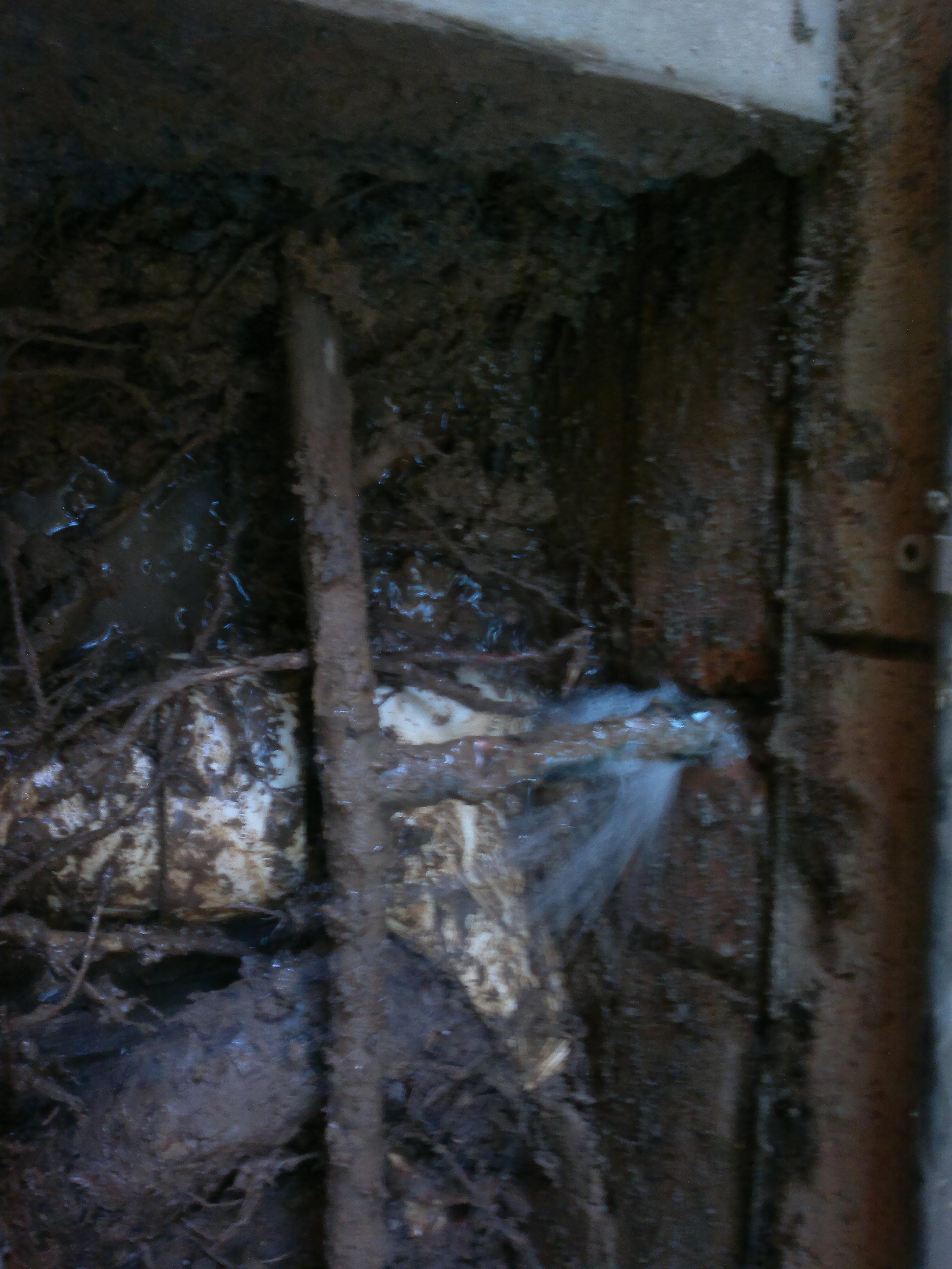 Gladesville Plumbing Burst pipe