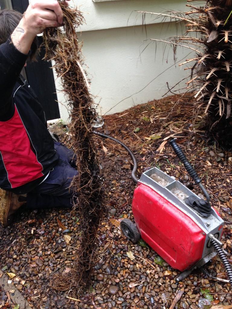 Blockage Gladesville Plumbing